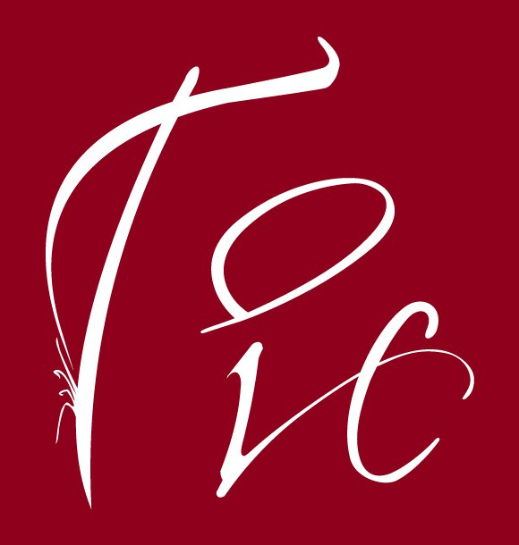 Team logo Ticandco, linguistics services