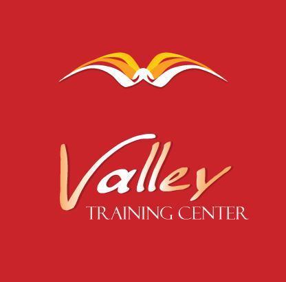 Team logo VALLEY TEAM