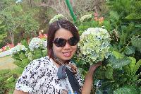queenz - Vietnamese to English translator
