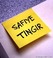 Safiye TINGIR's ProZ.com profile photo