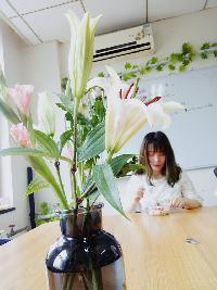 Sarah Yu - inglés al chino translator