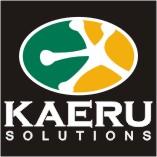 Kaeru Solutions - portugalski > chiński translator