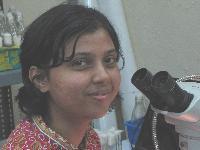 Smrithi - hindi > angielski translator