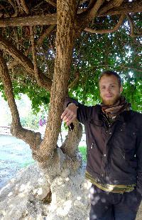 Martin Asplund - English to Swedish translator