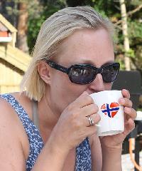karolinet - noruego a inglés translator