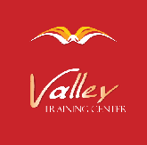 Valley Translation Services logo