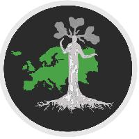 novalingua - Estonian to English translator