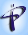 Parikh Info Solutions Pvt. Ltd. Formerly: Parikh Infosys P. Limited logo
