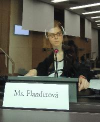 Kristyna Flanderova - English to Czech translator