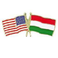 Levente Nyari - Hungarian a English translator