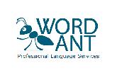 WordAnt logo
