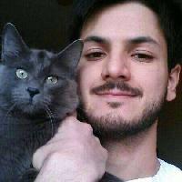 Mattia D'Agostino - angielski > włoski translator