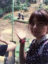 Crystal Kim - angielski > koreański translator