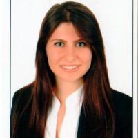Alara Donmez - Turkish to English translator