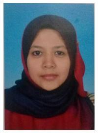 Maryam Razali - Malay to English translator