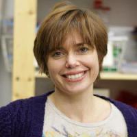 Catherina Groeneveld - alemán a inglés translator