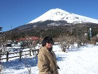 AniseK - Japanese to English translator